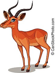 Gazelle - Illustration of a close up gazelle