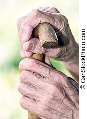Hands with walking canes - Hands of an old woman with...