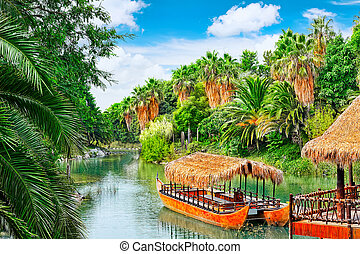 Beautiful landscape of humid tropical jungle. Tropic