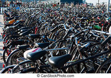 Lots of bicycles in Amsterdam