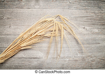 sheaf of barley on wooden table (copy space)