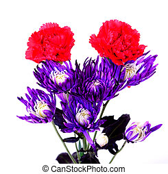 Floral arrangement isolated over a white background