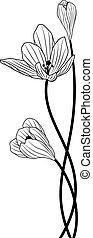 crocus - vector background with flowers of crocus in black...