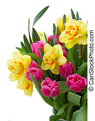 bunch of tulips and daffodils in vase - pink tulip flowers...