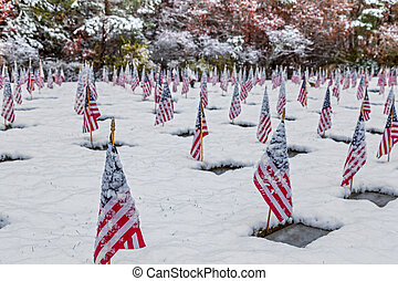 Snow-covered Veteran Cemetery with Flags