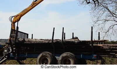 Special cargo truck with crane unload logs from truck....