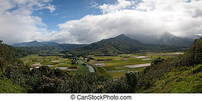 Panorama of Hanalei Valley on Kauai - Kauais Hanalei Valley...