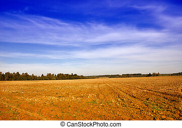 Tillage - Farming field near forest and sunny cloudy sky