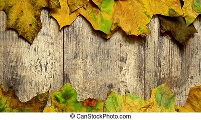 Autumn leaves on the old wooden floor