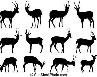 Set silhouettes of antelopes.