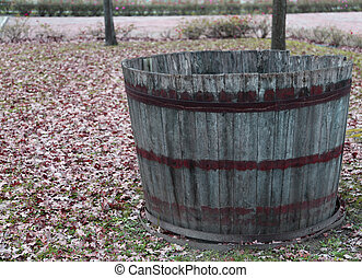 wooden tub to pick the grapes during the harvest and wine...
