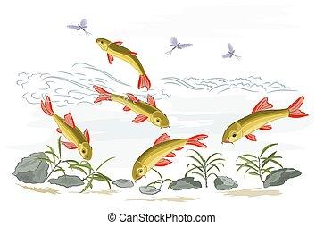 Small fish in the wild stream  vector