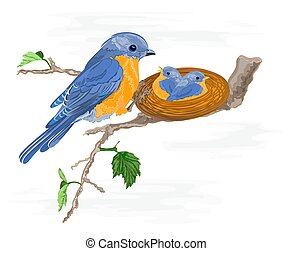 Birdie and little birds in the nest vector illustration