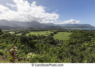 Kauai View - Scenic view point of the east shore of the...