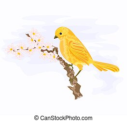 Bird on a branch with white flowers vector illustration