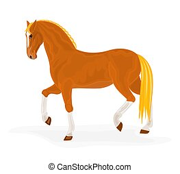 Sorrel horse vector illustration