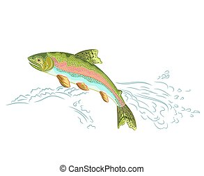 American rainbow trout jumps over the weir vector...