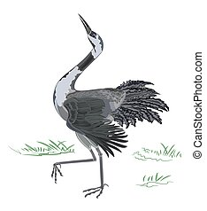 Dancing crane wildlife animal neck vector illustration