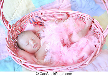 New Born Baby - Baby sleeping in a pink basket and covered...