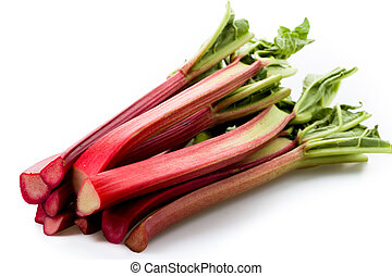 Rhubarb isolated on white underground