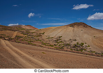 Shades of Brown - Gravel road running through the colourful...