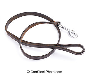 Old leather dog leash composition isolated over the white...