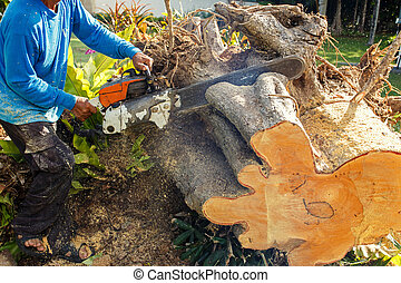 Man sawing log with a chain saw