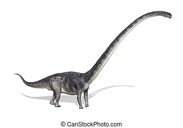 Omeisaurus Dinosaur - The Omeisaurus was a very large...