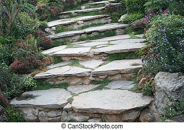 Landscaping in the garden. The path in the garden