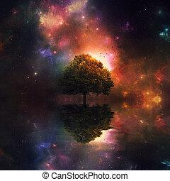 noche, cielo, y, árbol,