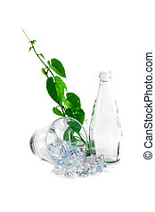 Bottle and glass of water with green ivy.