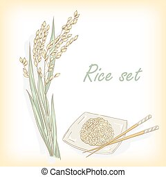 Rice set. Spikelet of rice, rice porridge, rice field, hand...