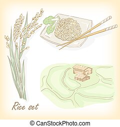 Rice set Spikelet of rice, rice porridge, rice field, hand...