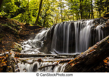 Weavers Creek Falls near Owen Sound, Ontario, Canada