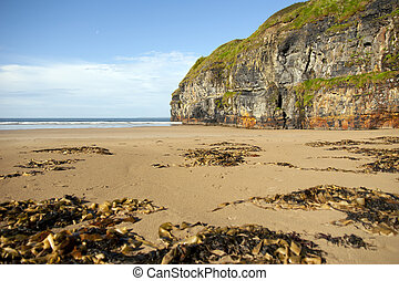 rocky cliffs of Ballybunion on the wild atlantic way -...