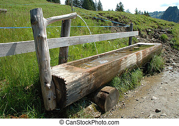Old wooden trough filled with water standing at wooden fence...