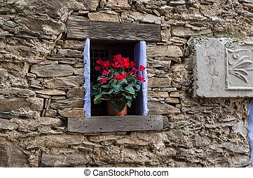 flowered window - Window ancient flowering of a house in the...