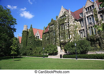 University of Chicago with ivy-clad halls