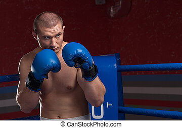 Handsome muscular young man wearing boxing gloves Boxer with...