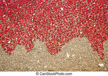 Ceramic poppies installation