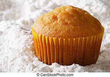 orange muffin macro in powdered sugar. horizontal
