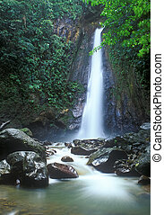 Jungle waterfall in Dominica island