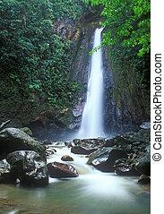 Jungle waterfall in Dominica island