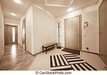 beautiful corridor with a door in a modern apartment