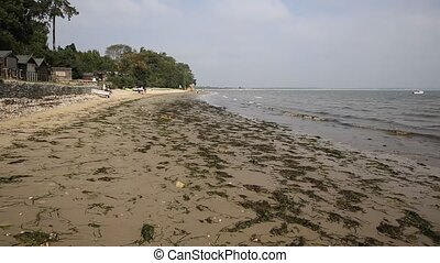 Studland South beach Dorset England UK located between...