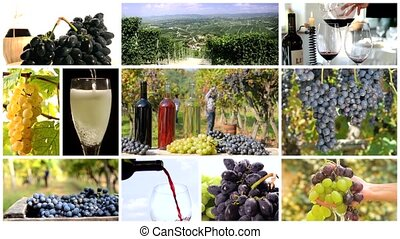 grapes and vineyards montage - red wine montage including...