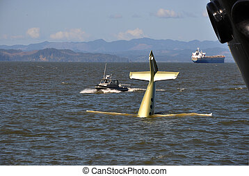 Airplane Crash - A small airplane crash landing into the...