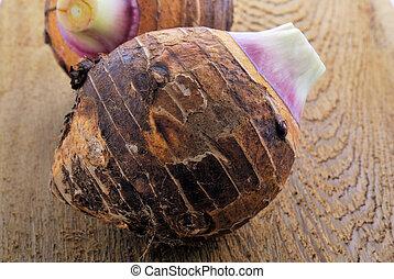 Taro (Colocasia esculenta var. Antiquorum) , Eddoe or Eddo...