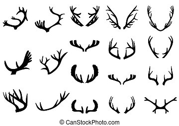 Collection of deer horns. Isolated on white background