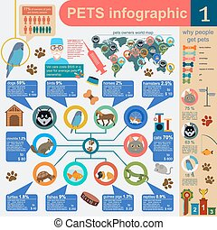 Domestic pets infographic elements, helthcare, vet Vector...